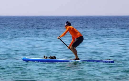 Stand Up Paddleboard for Exercise