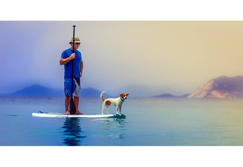 Paddleboard sales rentals syracuse ny